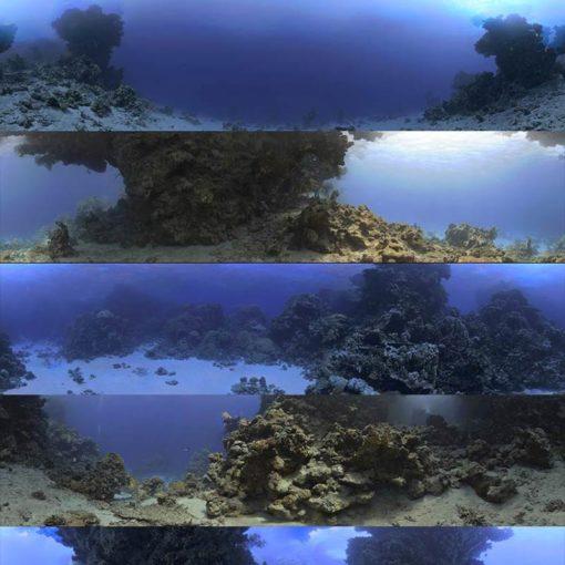 Download Dosch HDRI: Underwater