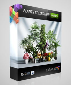 downlaod CGAxis Models Volume 1 Plants