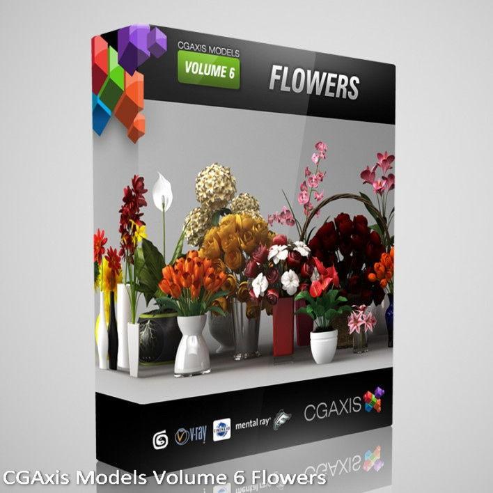 download CGAxis Models Volume 6 Flowers