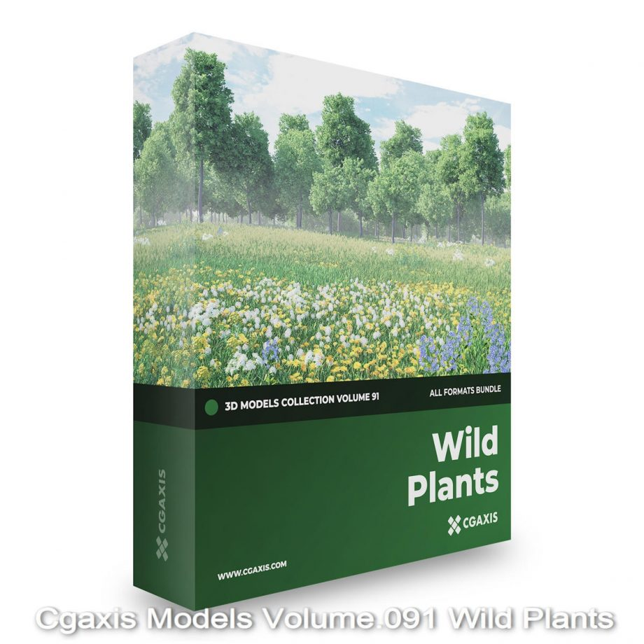 Download Cgaxis Models Volume.091 Wild Plants