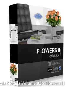 Download CGAxis Models Volume 26 Flowers II