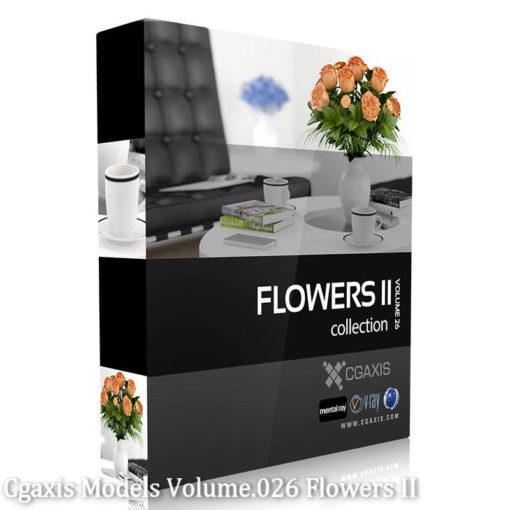 Download CGAxis Models Volume 26 Flowers II