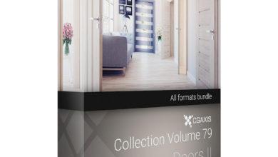 Download CGAxis Models Volume 79 Doors II