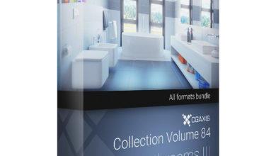 Download CGAxis Models Volume 84 Bathrooms III