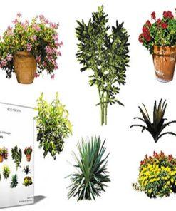 DOSCH 2D Viz-Images: Plants free download