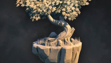 Stylized Forest Sculpting in ZBrush : Pluralsight free Download