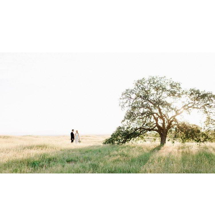 Udemy – Editing for hybrid film + digital wedding photographers free download