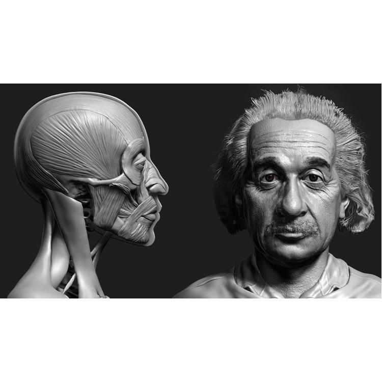 Photo of Zbrush Facial Anatomy and Likeness Character Sculpting
