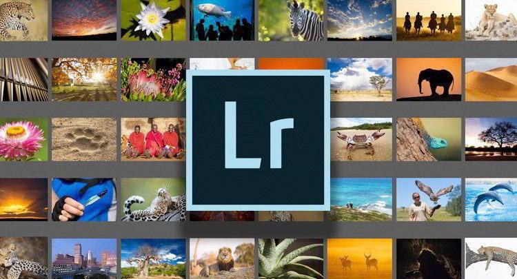 Adobe Lightroom Classic CC - Beginner Level free download