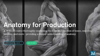 CGMaster Academy – Anatomy for Production free download