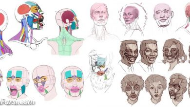 CGMaster Academy – Head Drawing and Construction with Christian Nacorda free download