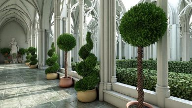 Evermotion – Archmodels vol. 075 : plants free download