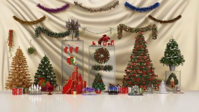 Evermotion – Archmodels vol. 088 : Christmas decorations free download