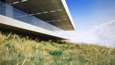 Evermotion – Archmodels Vol 124 : grass, small plants free download