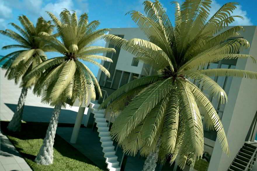 Evermotion – Archmodels vol. 42 : realistic plants free download