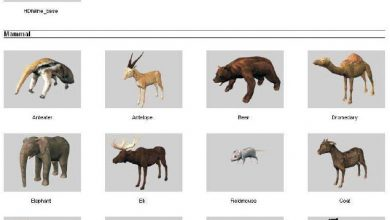 dosch design 3d animals free download