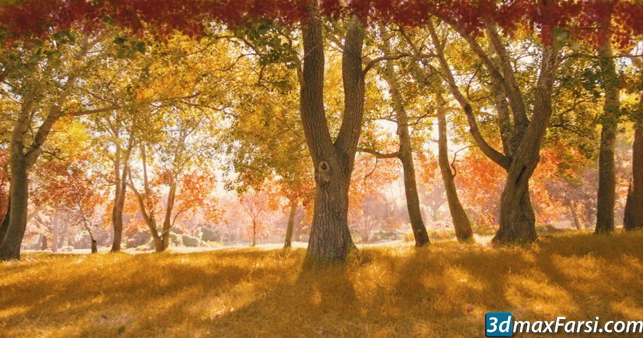 Digital Tutors – Changing Seasons in After Effects and Photoshop free download
