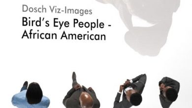 Dosch Viz-Images: Bird's Eye People - African American