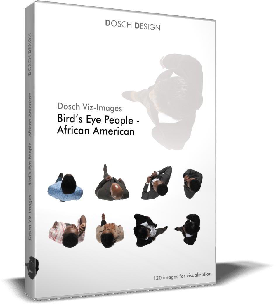 Dosch Viz-Images: Bird's Eye People - African American free download