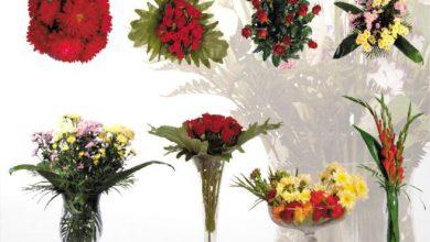 Dosch Viz Images: Floral Decor