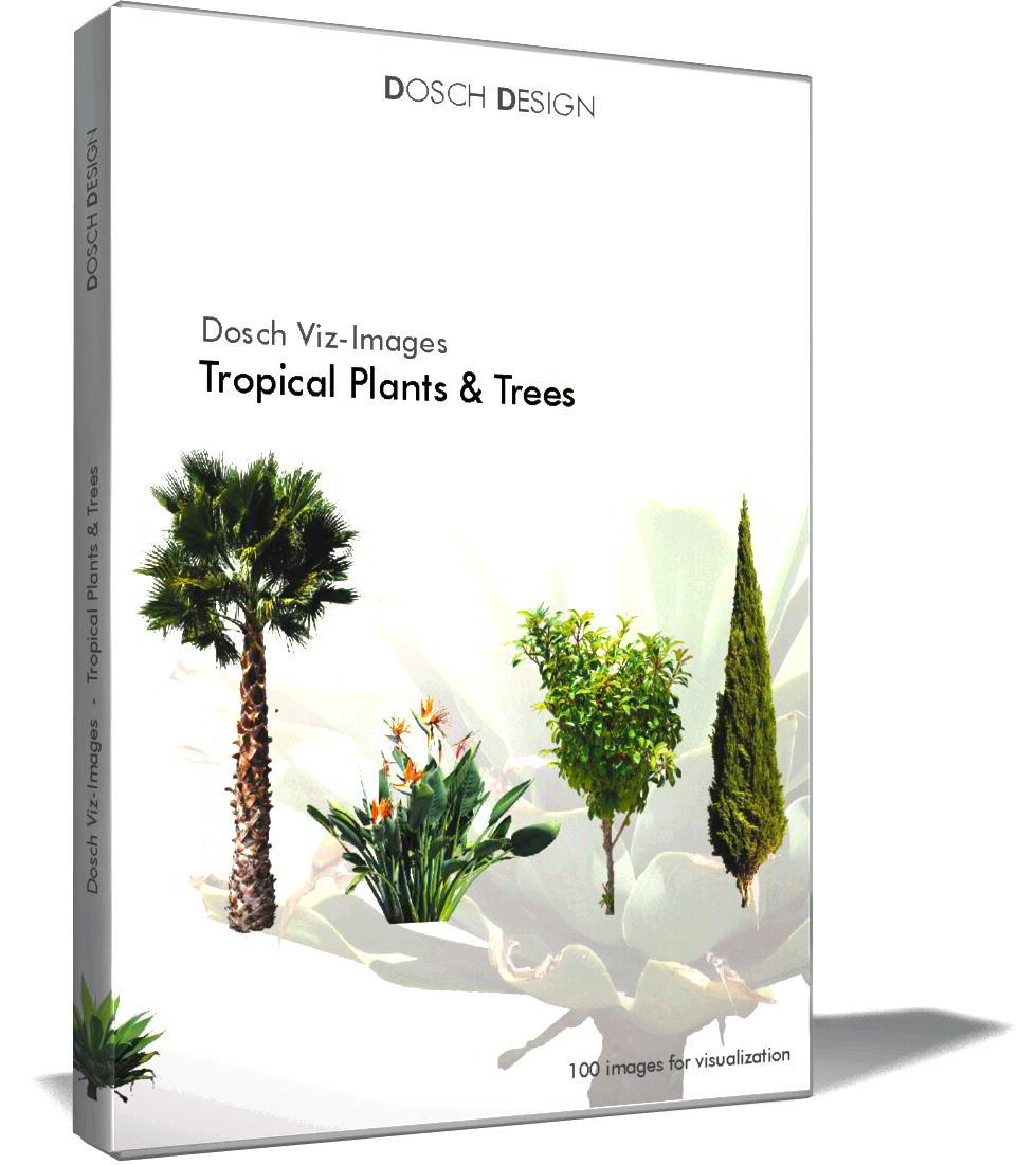 Dosch Viz Images: Tropical Plants & Trees free download