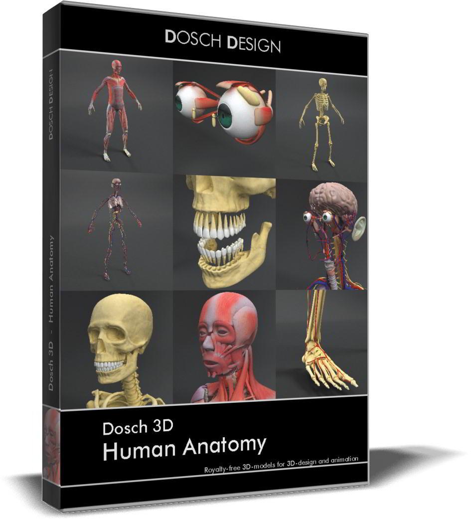 Dosch 3D: Human Anatomy free download