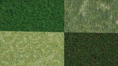 Dosch Textures: Grass Surfaces
