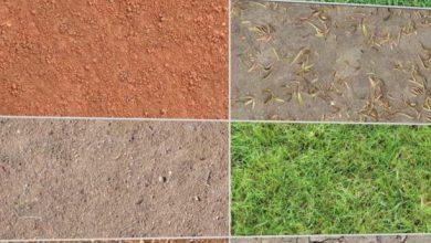 Dosch Textures: Outdoor