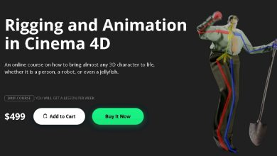 Motion Design School – Rigging and Animation in Cinema 4D free download