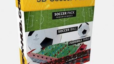 The Pixel Lab – 3D Soccer Pack free download