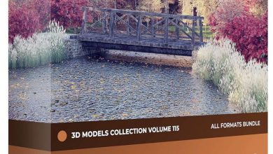 CGAxis – Autumn Trees 3D Models Collection – Volume 115 free download