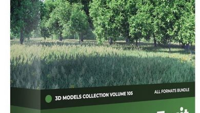 CGAxis – Fruit Trees 3D Models Collection – Volume 105 free download