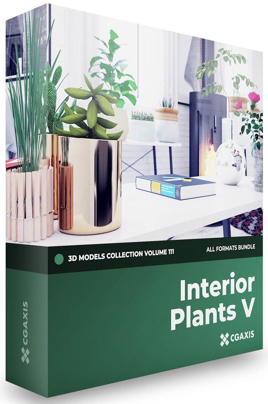 CGAxis – Interior Plants 3D Models Collection – Volume 111 free download