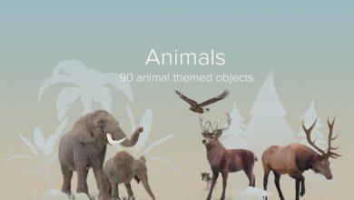 PixelSquid – Animals Collection free download