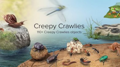 PixelSquid – Creepy Crawlies Collection free download