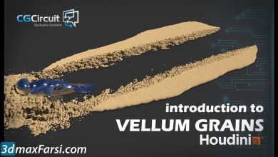 CGCircuit – Introduction to Vellum Grains free download
