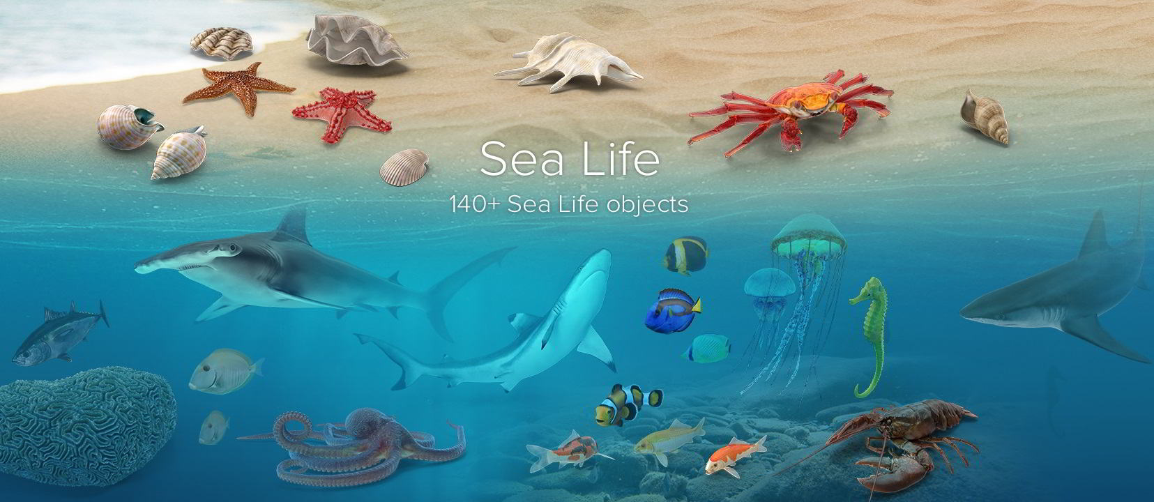 PixelSquid – Sea Life Collection free download
