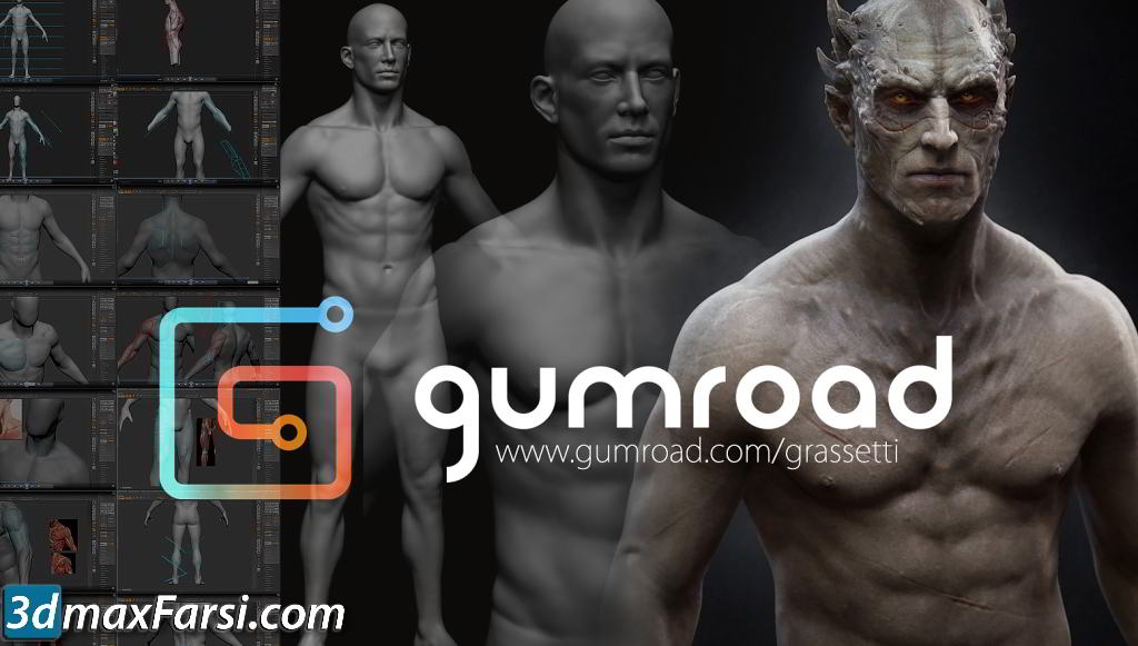 Gumroad - Design and Anatomy Package free download
