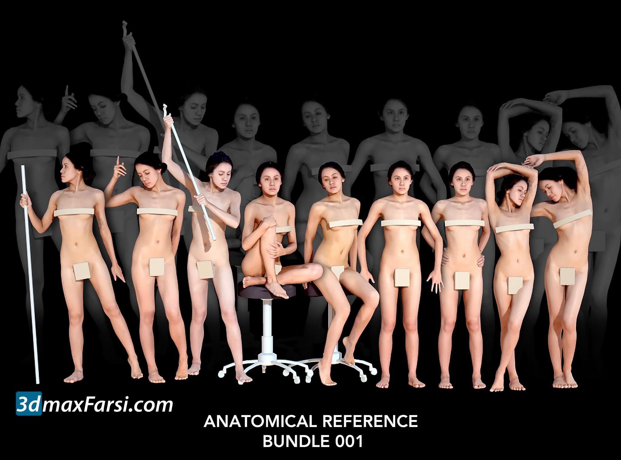 Anatomical Reference Bundle 001 People Scan free download