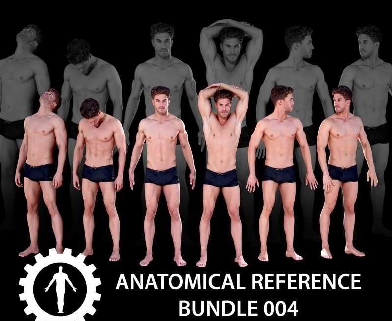 Anatomical Reference Bundle 004 – 3D Model free download